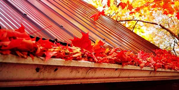 limpieza de canalones en otoño