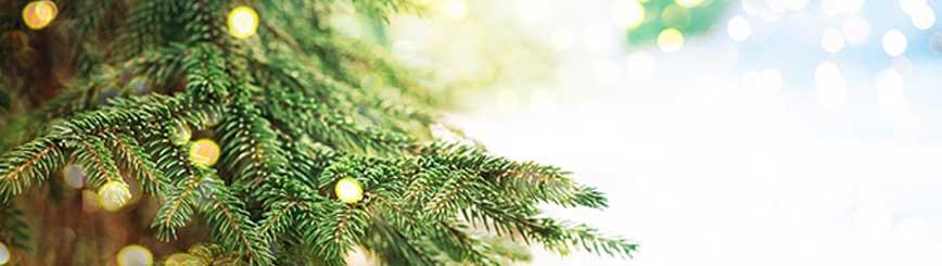 Tips Para La Limpieza Navidad