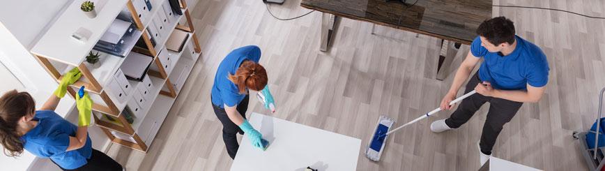 Guia Para Contratar Un Servicio De Limpieza Doméstica