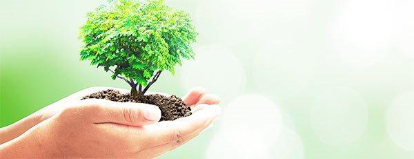 cuidar el medio ambiente durante el vaciado de un inmueble